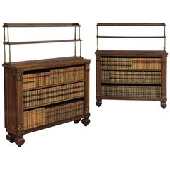 19th Century Regency Rosewood Open Bookshelves