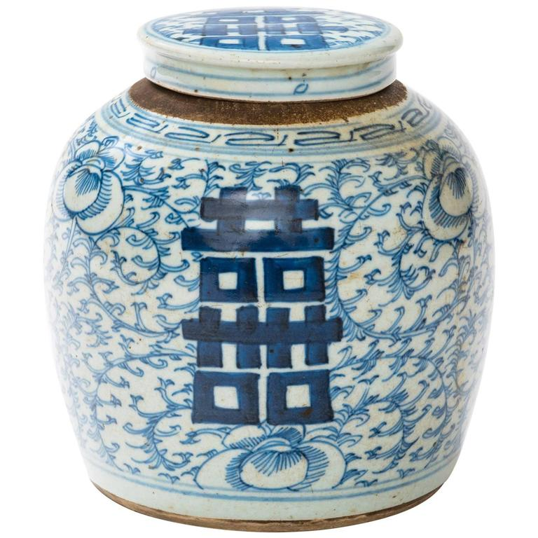 Chinese 19th Century Blue And White Ginger Jar For
