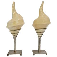 Pair of Sea Shell Lamps