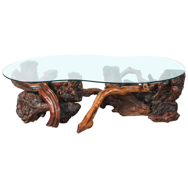 Mid Century Driftwood And Glass Coffee Table At 1stdibs