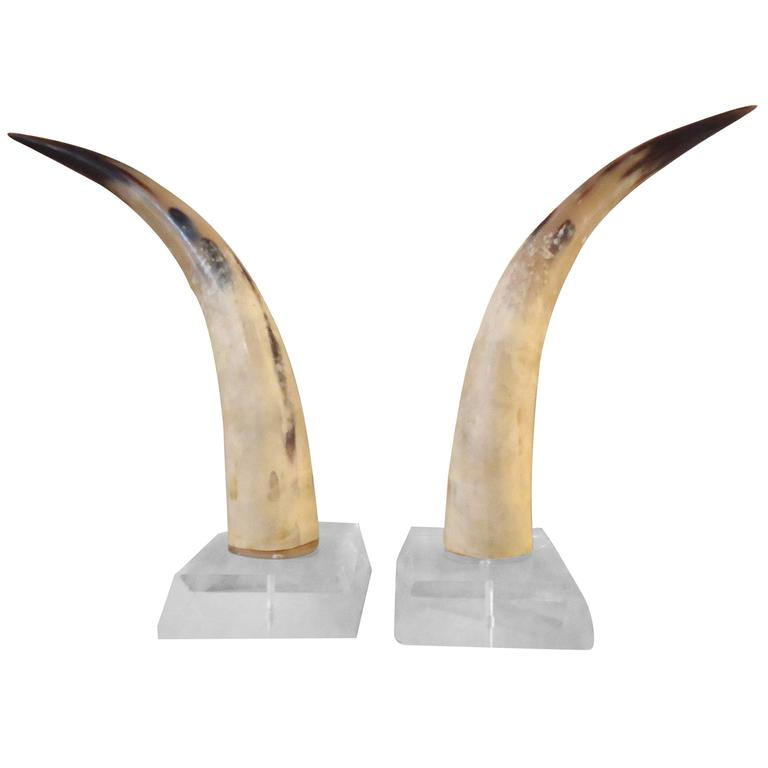 Pair of Steer Horn Bookends