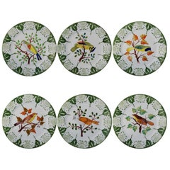 Set of six Tropical Birds Ceramic Plates