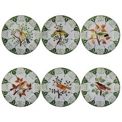 Set of six Tropical Birds Plates