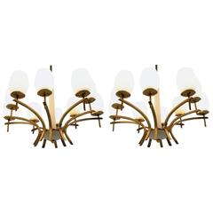 Pair of Mid-Century Large Brass Chandeliers, 1960