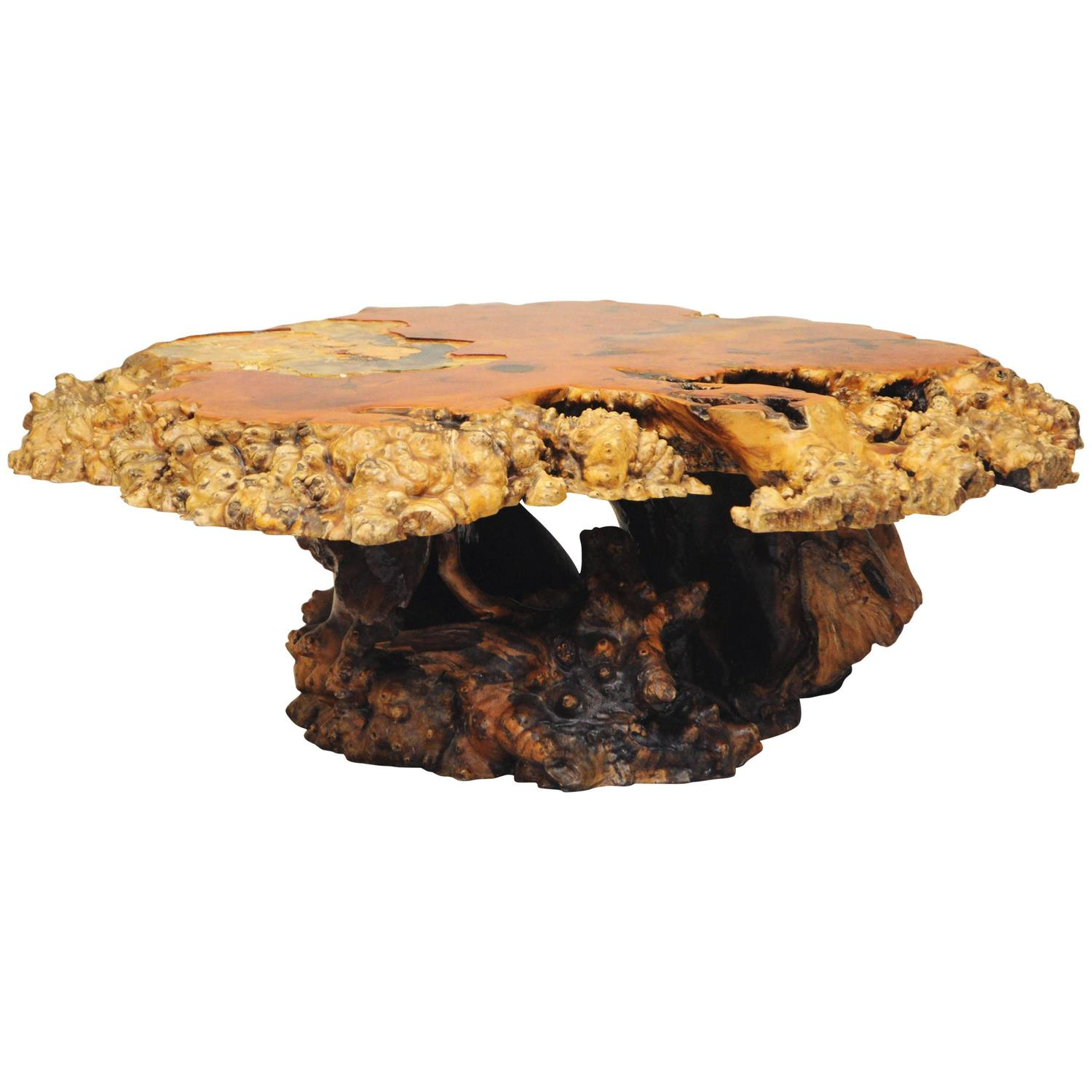 California Redwood Free Form Burl wood Slab Tree Root Coffee Table