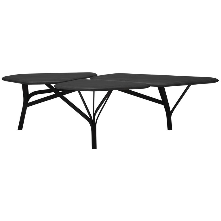 Borghese Coffee Table, Noé Duchaufour-Lawrance For Sale