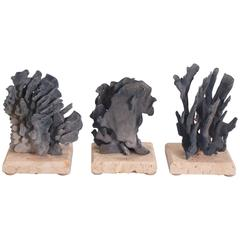 Three Inspiring Blue Coral Organic Sculptures, Priced Individually