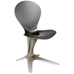 Contemporary Flower Chair in Glass/ Carbon Fiber