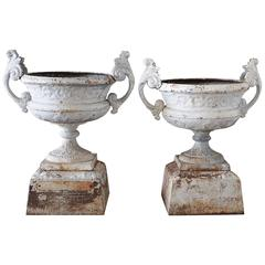Pair of 19th Century Cast Iron Urns on Pedestals