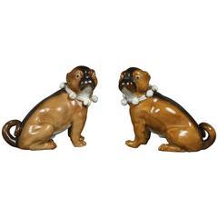 Pair of German Porcelain Figures of Seated Pugs