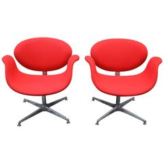 Pierre Paulin Little Tulip Chairs for Artifort 1960s First Series, Set of Two
