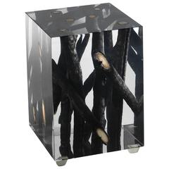 Burnt Branches in Acrylic Side Table