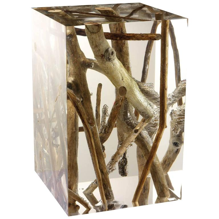 Driftwood Branches in Acrylic Side Table
