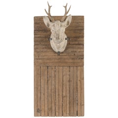 Plaster Stag's Head on Board