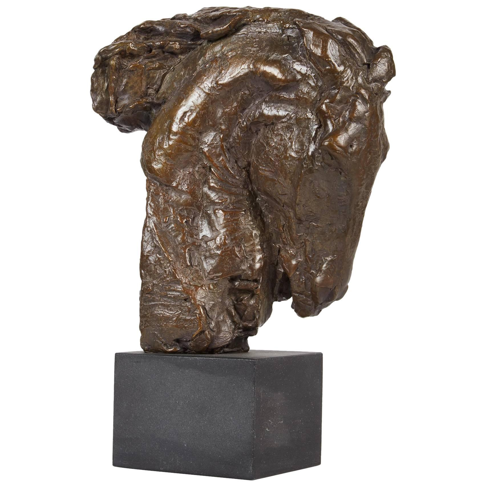 """""""The Conqueror"""", Bronze Horse Head by George Carlson"""