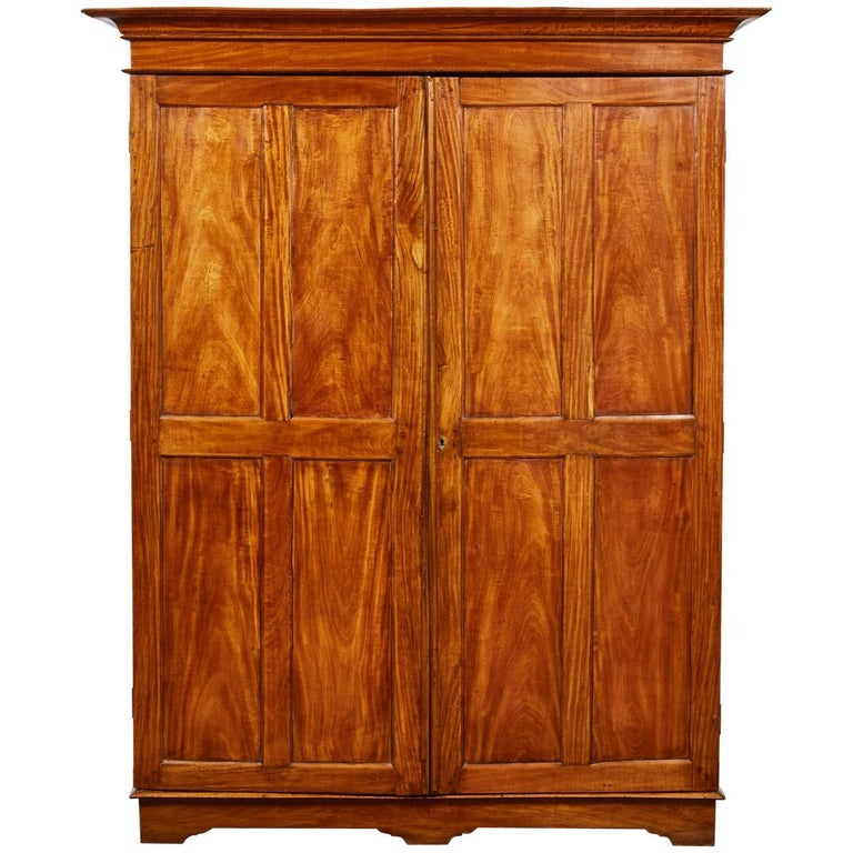 19th Century Two-Door Simple Satinwood Cabinet For Sale