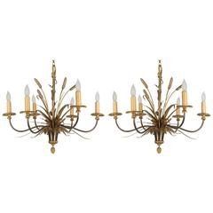 Pair of Maison Charles Chandeliers