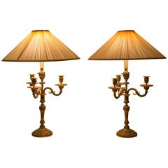 Pair of Louis XVI Bronze Candelabra Lamp Mounted