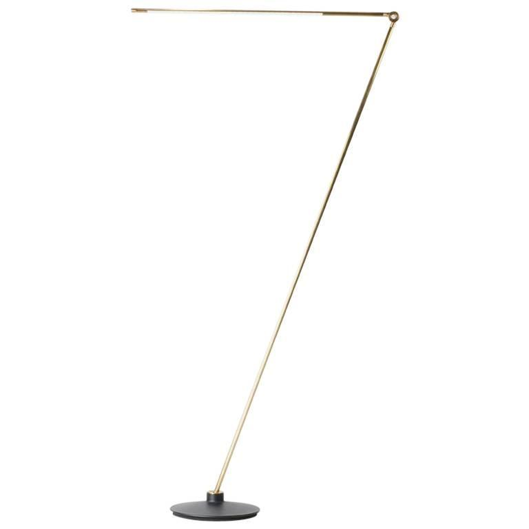 Thin Model F Contemporary 1/2 Brass Floor Led Lamp with Cast Iron Base For Sale