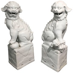Large Pair of Chinese Mid-Century White Glazed Foo Dogs