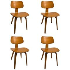 Set of Four Blonde Bent Plywood Dining Chairs by Thonet