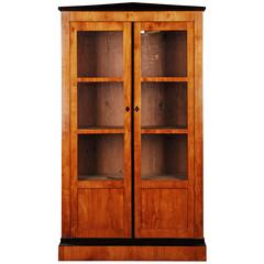 19th Century Biedermeier Style Bookcase or Vitrine