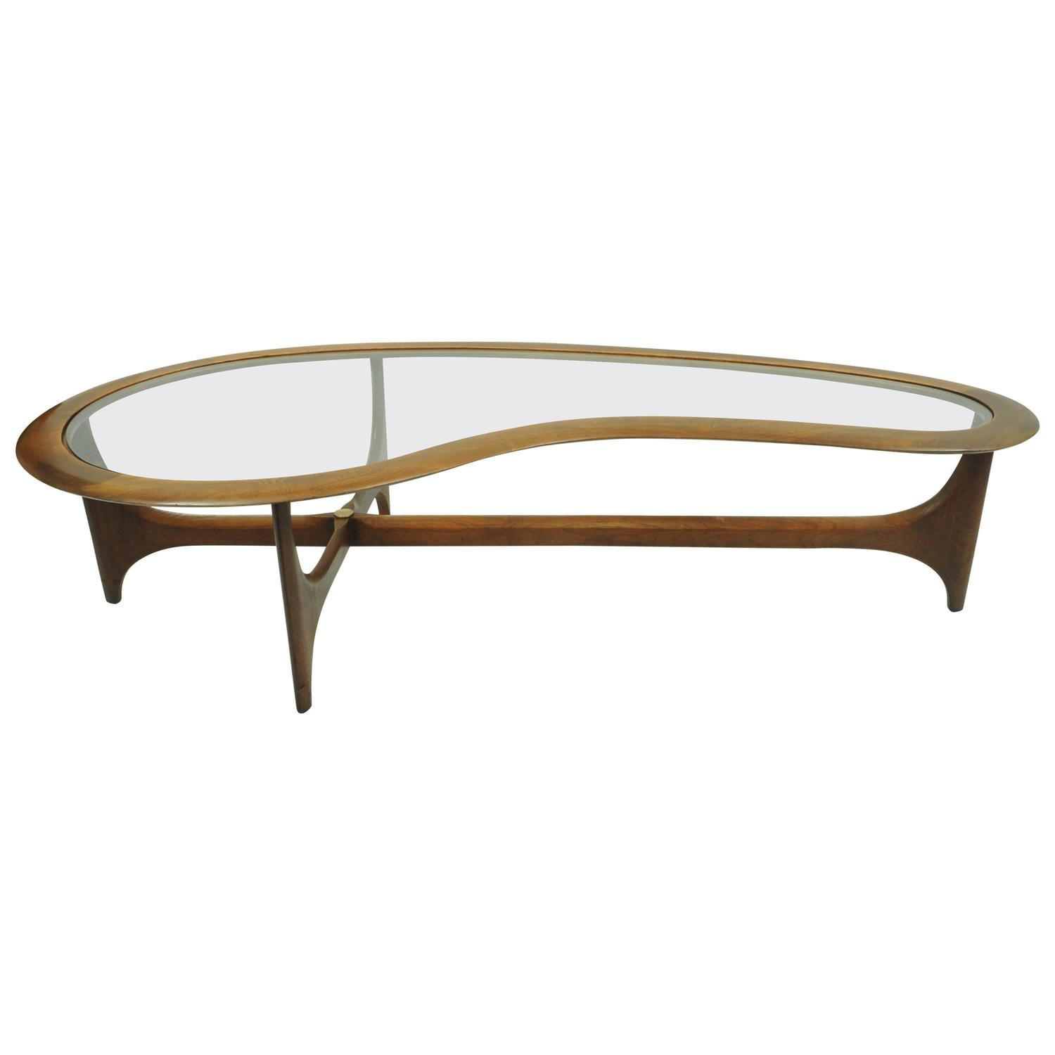 Vintage Lane Kidney Shaped Boomerang Walnut and Glass Coffee Table
