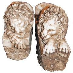 Pair of Marble Lions