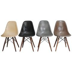 Set of Four Multi-Color Eames DSW Chairs
