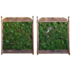 Pair of Moss Follies by Lawton Mull