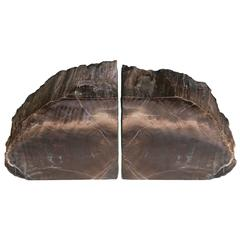 Rare Bookmatched Black Petrified Wood Polished Monolithic Bookends