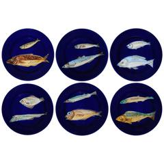 Set of Six Blue Dessert Plates with Sea Life
