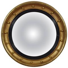 English Regency Giltwood Convex Mirror, Original Mirrorplate