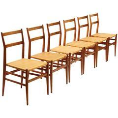 Six 1950s Leggera Chair by Gio Ponti for Figli di Amedeo Cassina