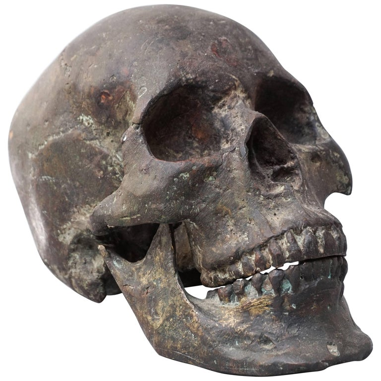 Bronze Cast of a Human Skull For Sale