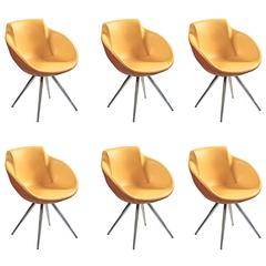 Six Armchairs, Bicolor Brown/Yellow, Mid-Century, Made in Italy, High Quality