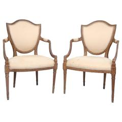 Pair of Early 20th Century Italian Hepplewhite Shieldback Chairs