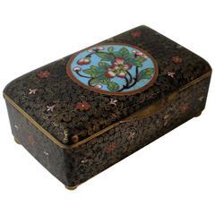 19th Century Chinese Cloisonne Decorative Box