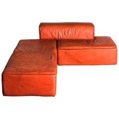 """1968 """"Paione"""" Sofa Designed by Claudio Salocchi for Sormani"""