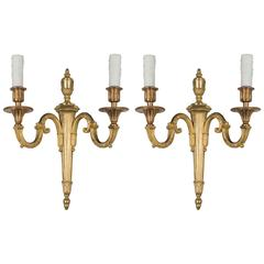 Pair of Louis XVI Style French Sconces