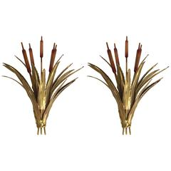 Pair of Sconces Reed by Maison Jansen, France, 1970s
