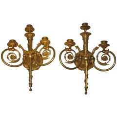 19th Century Pair of French Bronze Doré Sconces