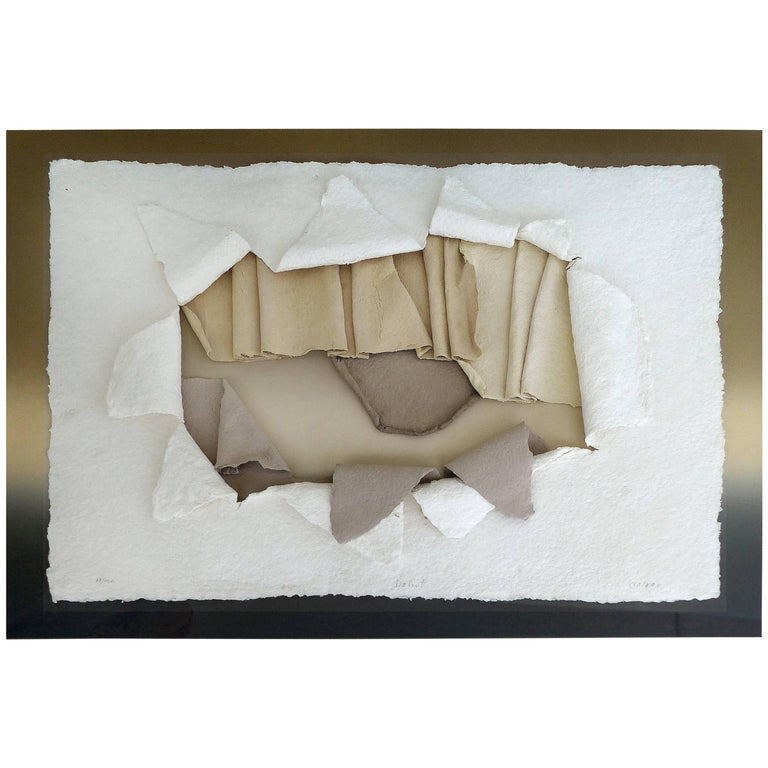 20th Century Handmade Paper Wall Sculpture Encased in Acrylic For Sale