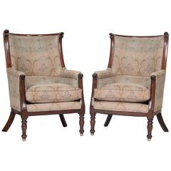 Huge Pair of  Barrel Form Mahogany Chairs
