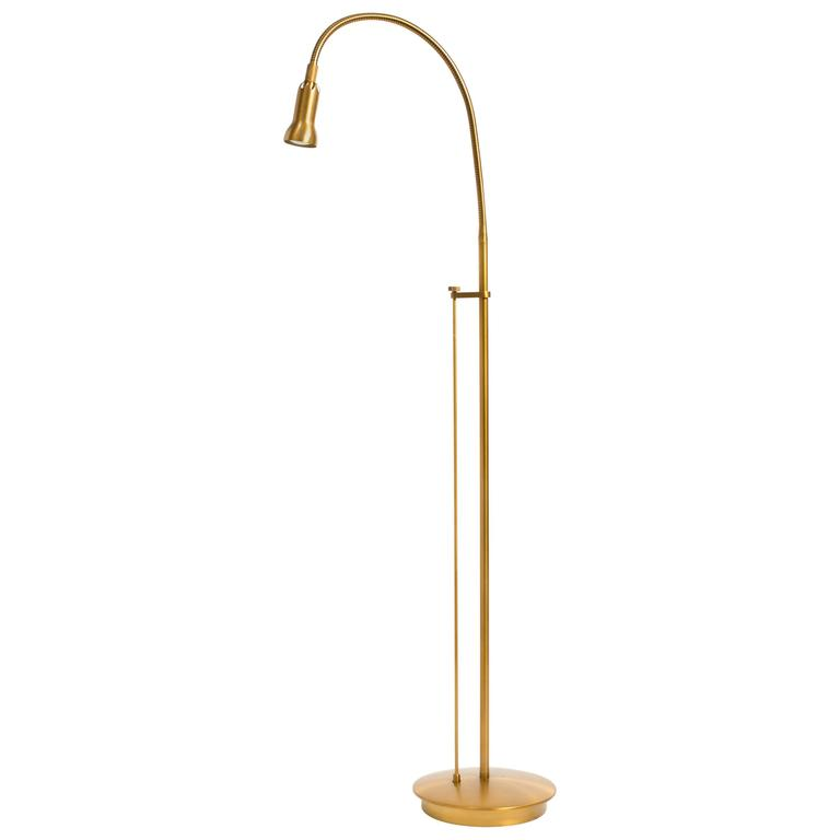 Br Gooseneck Floor Lamp For