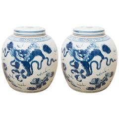 Pair of Blue and White Chinese Export Ginger Jars
