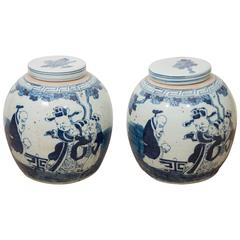 Pair of Chinese Export Porcelain Ginger Jars