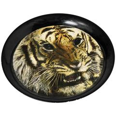 Piero Fornasetti tray with Tiger, Italy circa 1960