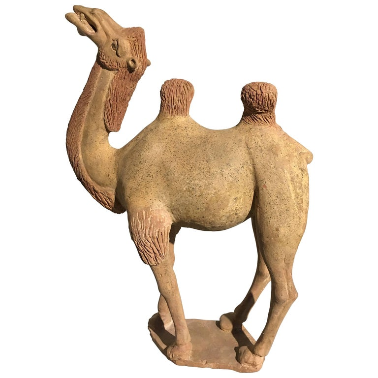 Chinese Tang Dynasty Painted Pottery Model of a Camel For Sale