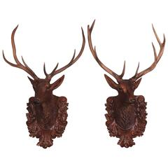 Pair of Black Forest Lifesize Stag Head